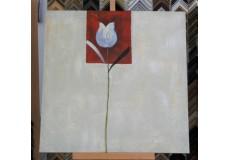 Obraz bílý tulipán 90x90 cm